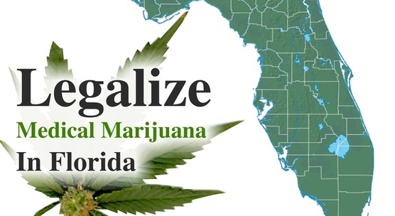 Could Florida Cannabis Act Legalize Marijuana is Florida