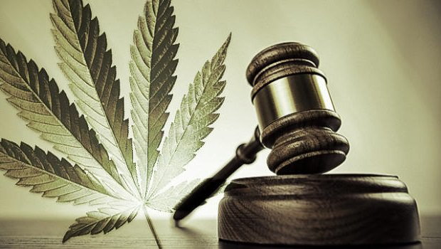 The Compassionate Medical Cannabis Act And Amendment 2:  A Better Understanding